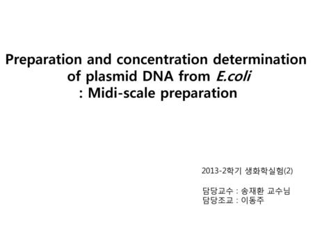Preparation and concentration determination of plasmid DNA from E.coli