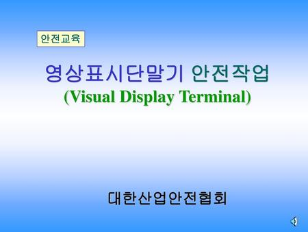 (Visual Display Terminal)