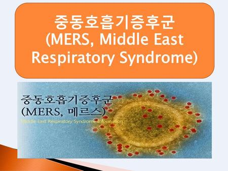 (MERS, Middle East Respiratory Syndrome)