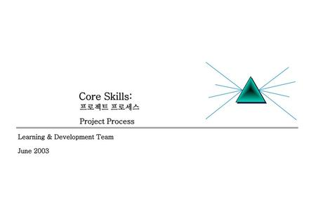 Core Skills: 프로젝트 프로세스 Project Process Learning & Development Team