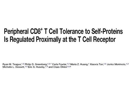 1.Activation of tolerant TCR transgenic CD8+ T cells.