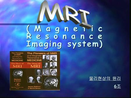 (Magnetic Resonance Imaging system)