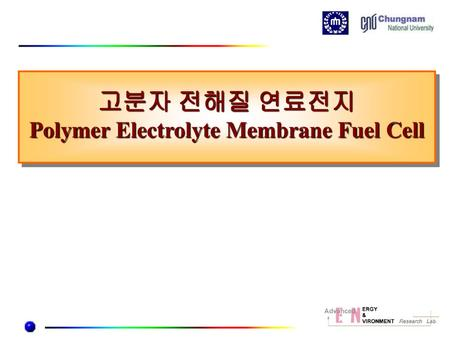 Polymer Electrolyte Membrane Fuel Cell