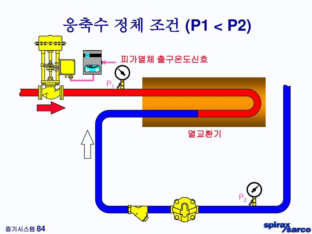 트랩 출구측 배관의 단면도 97 kg의 재증발 증기 총체적의 99.45% 903 kg의 응축수 총체적의 0.55 %