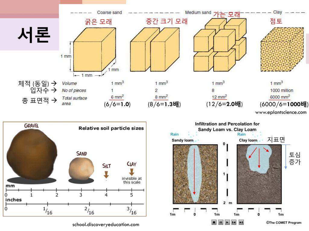 서론 가는 모래 굵은 모래 중간 크기 모래 점토 체적 (동일)  입자수  총 표면적  (6/6=1.0)