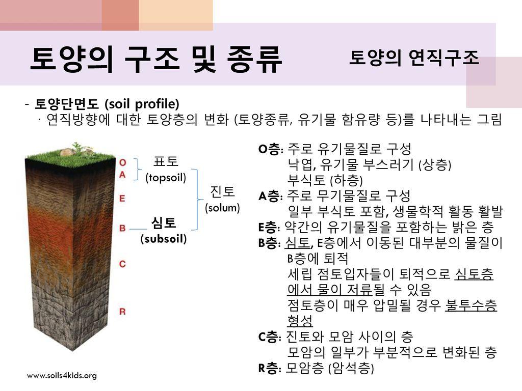 토양의 구조 및 종류 토양의 연직구조 - 토양단면도 (soil profile)