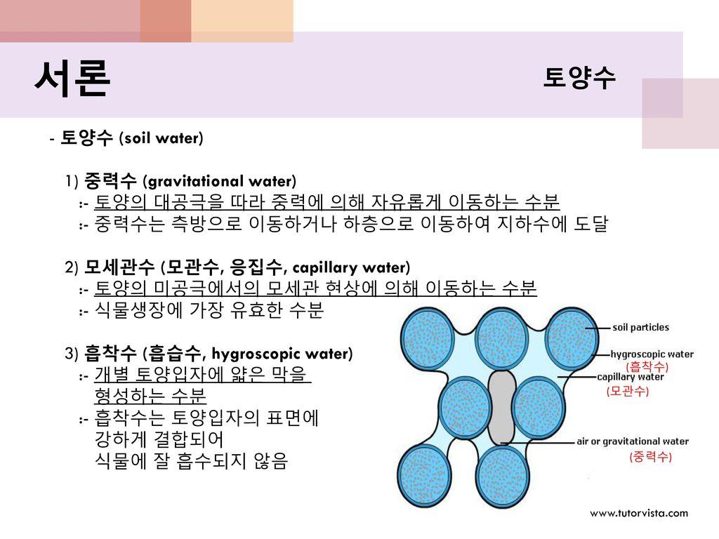 서론 토양수 - 토양수 (soil water) 1) 중력수 (gravitational water)