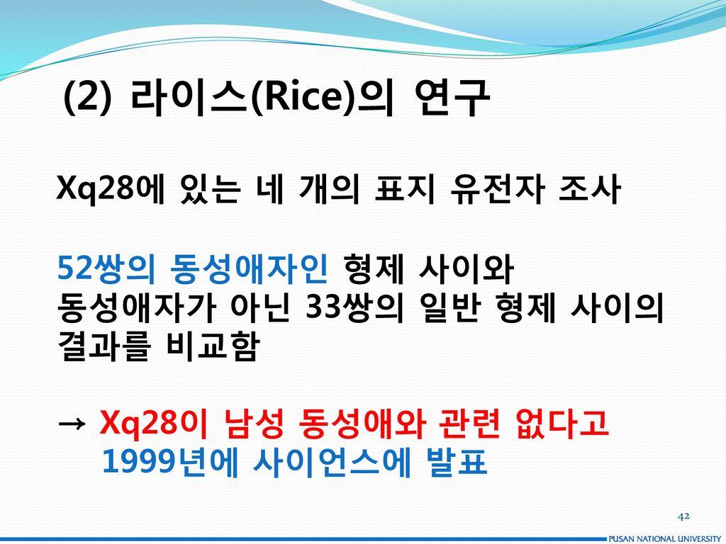 (2) 라이스(Rice)의 연구 Xq28에 있는 네 개의 표지 유전자 조사 52쌍의 동성애자인 형제 사이와
