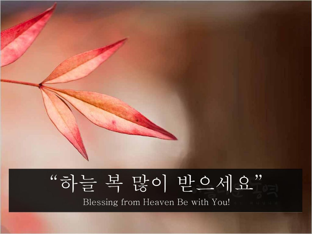 Blessing from Heaven Be with You!