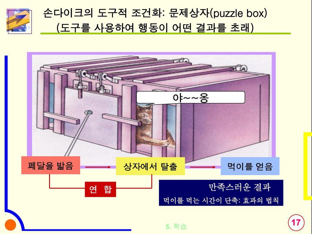 손다이크의 도구적 조건화: 문제상자(puzzle box)