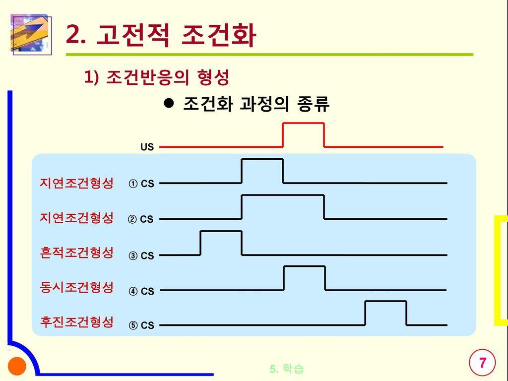 2. 고전적 조건화 1) 조건반응의 형성 조건화 과정의 종류 지연조건형성 흔적조건형성 동시조건형성 후진조건형성 5. 학습 US
