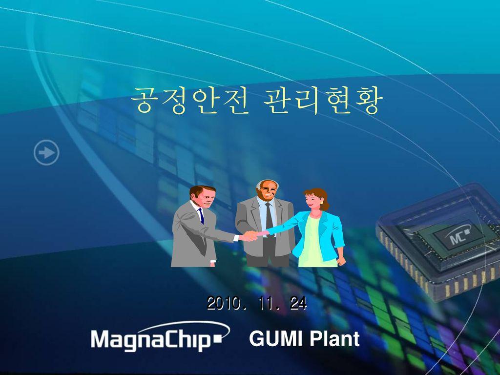 공정안전 관리현황 2010. 11. 24 GUMI Plant