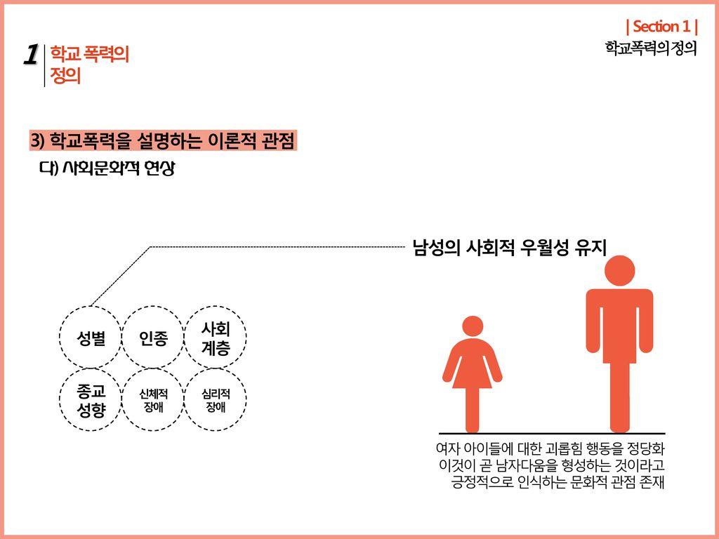 1 학교 폭력의 정의 3) 학교폭력을 설명하는 이론적 관점 남성의 사회적 우월성 유지 다) 사회문화적 현상