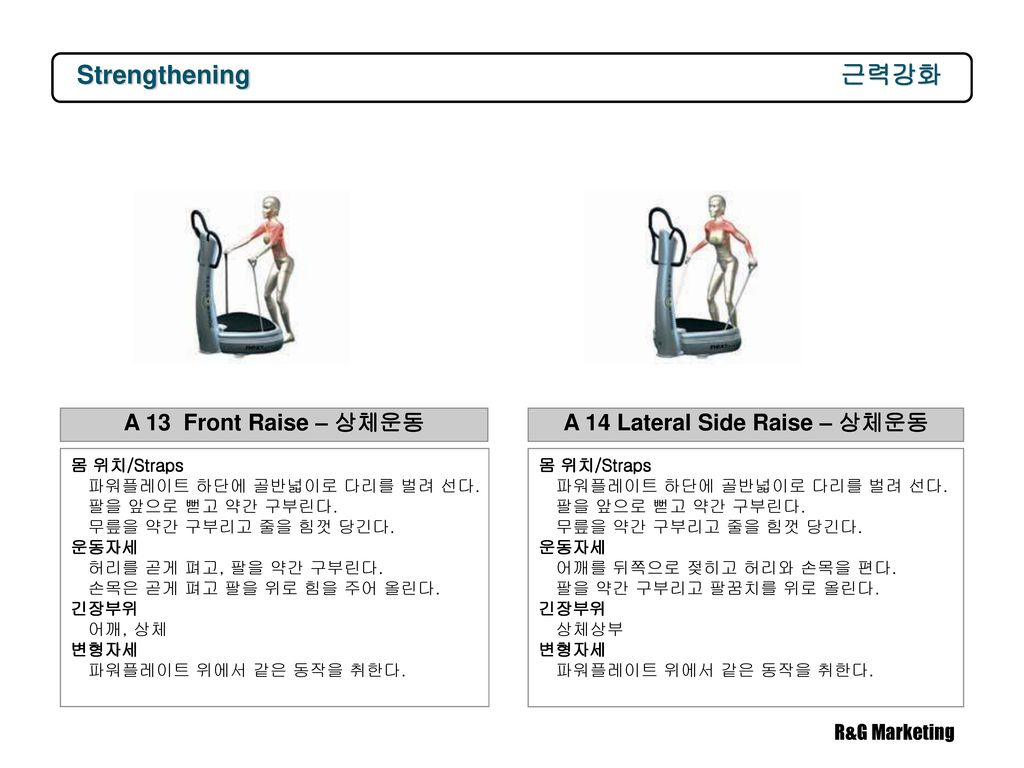 A 14 Lateral Side Raise – 상체운동