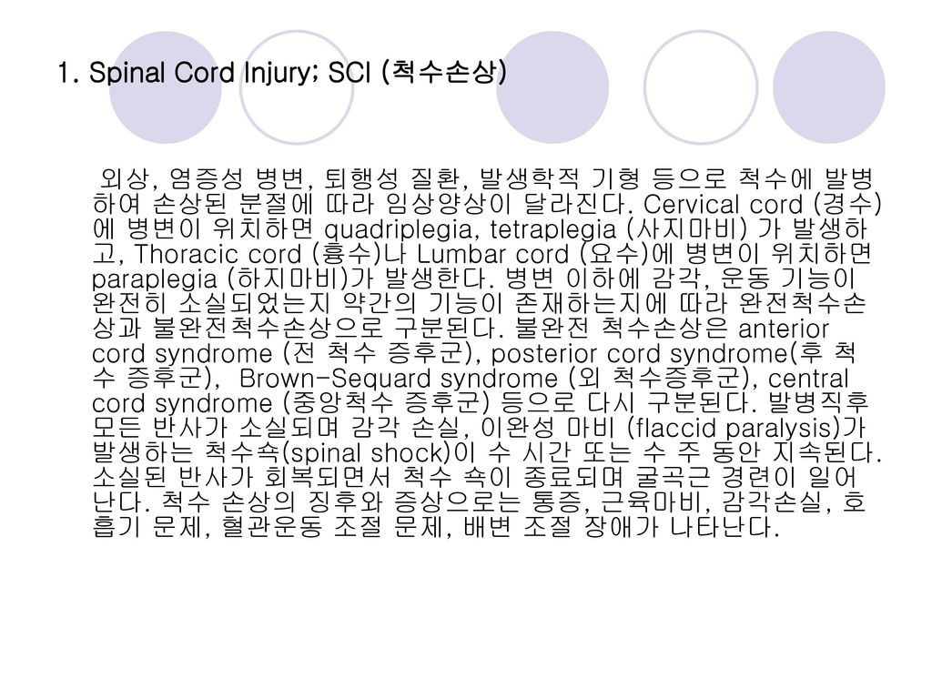1. Spinal Cord Injury; SCI (척수손상)