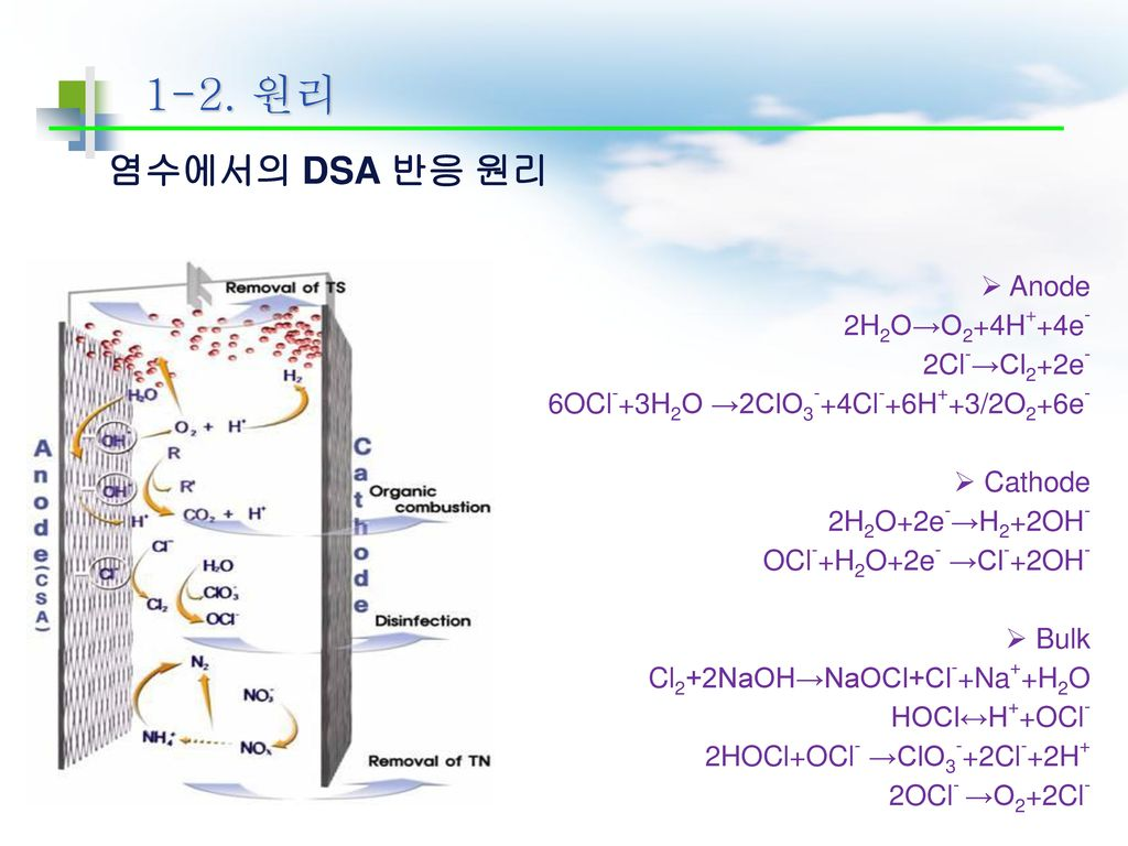 1-2. 원리 염수에서의 DSA 반응 원리 Anode 2H2O→O2+4H++4e- 2Cl-→Cl2+2e-