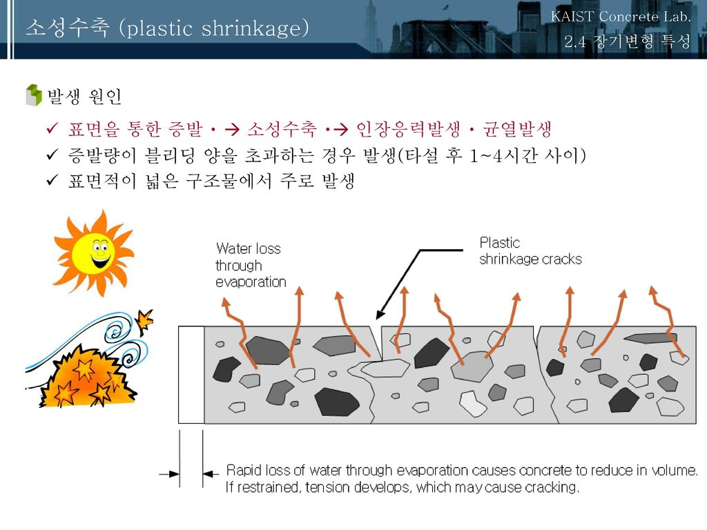 소성수축 (plastic shrinkage)