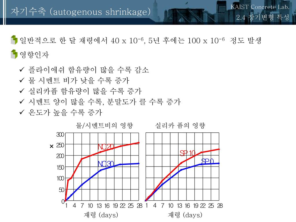 자기수축 (autogenous shrinkage)