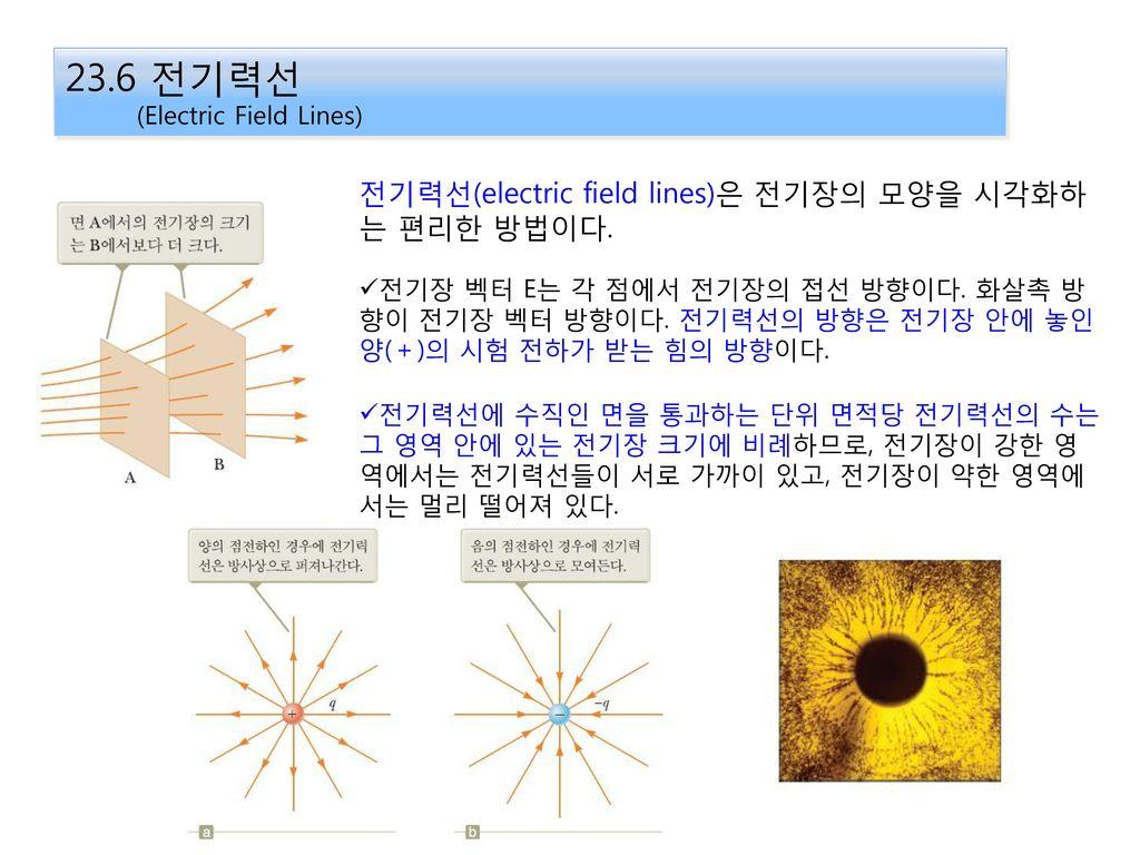 23.6 전기력선 전기력선(electric field lines)은 전기장의 모양을 시각화하는 편리한 방법이다.