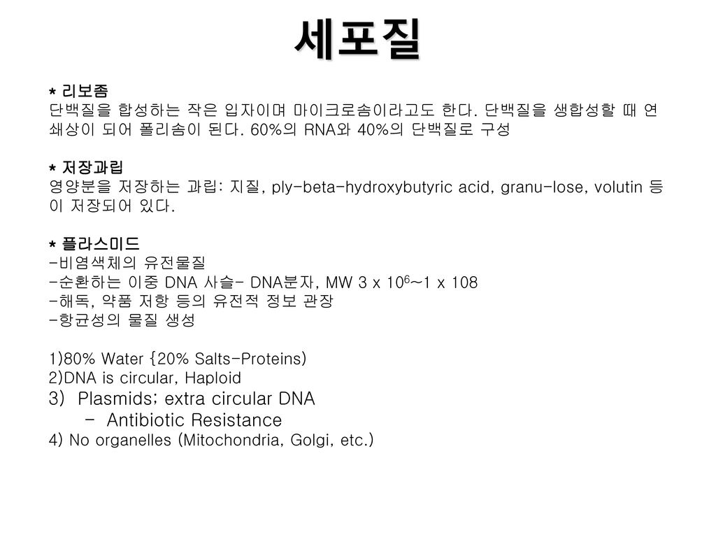세포질 3) Plasmids; extra circular DNA Antibiotic Resistance * 리보좀