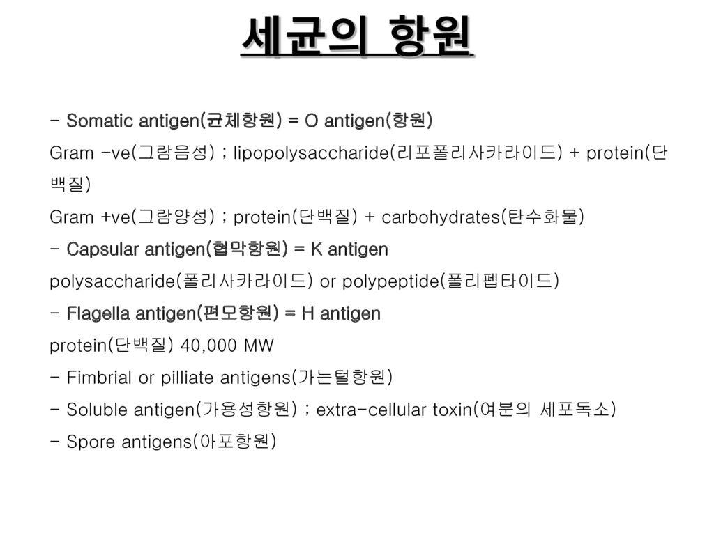 세균의 항원 - Somatic antigen(균체항원) = O antigen(항원)