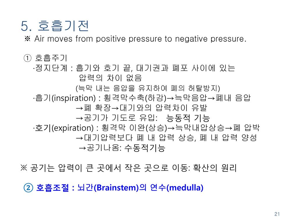 5. 호흡기전 ※ Air moves from positive pressure to negative pressure.