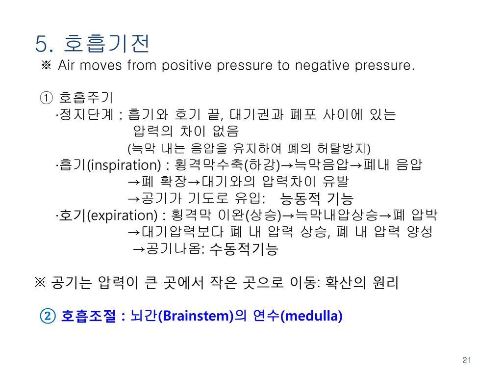 5. 호흡기전 ※ Air moves from positive pressure to negative pressure.