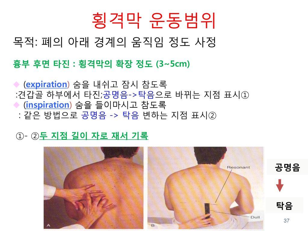 횡격막 운동범위 목적: 폐의 아래 경계의 움직임 정도 사정 흉부 후면 타진 : 횡격막의 확장 정도 (3~5cm)