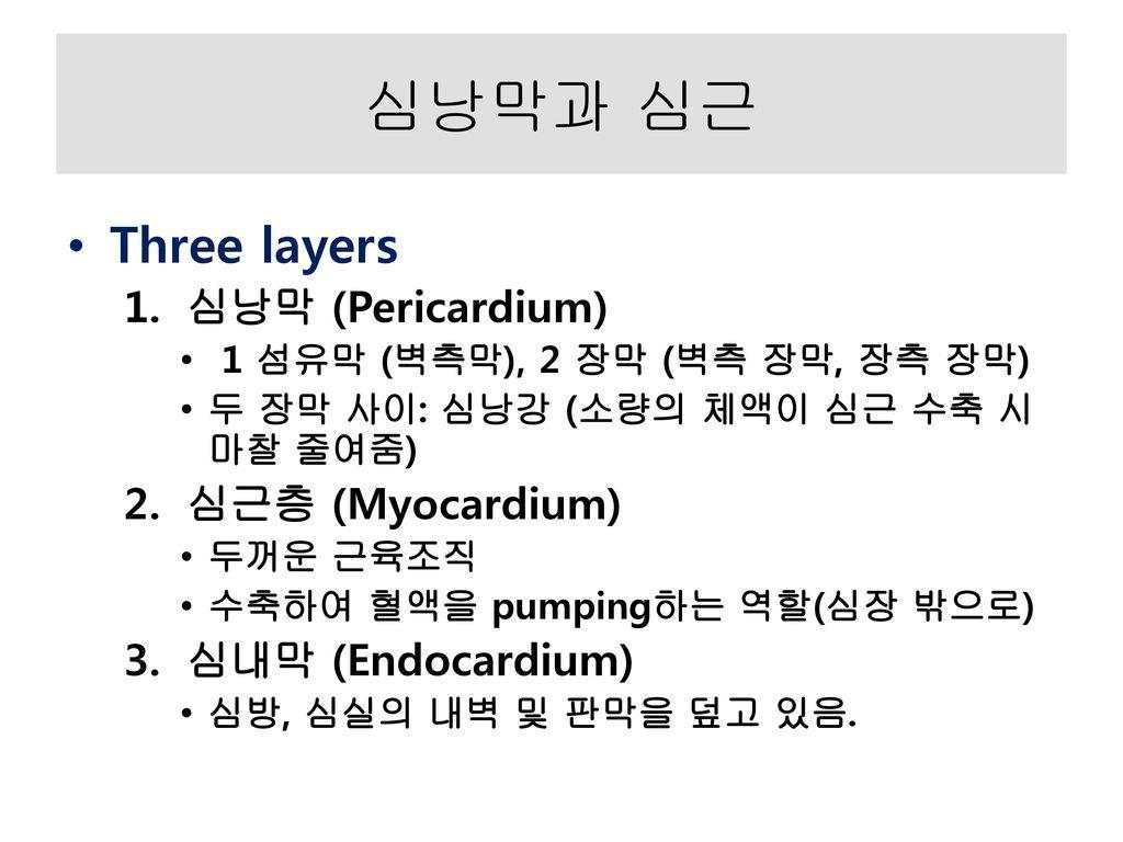 심낭막과 심근 Three layers 심낭막 (Pericardium) 심근층 (Myocardium)