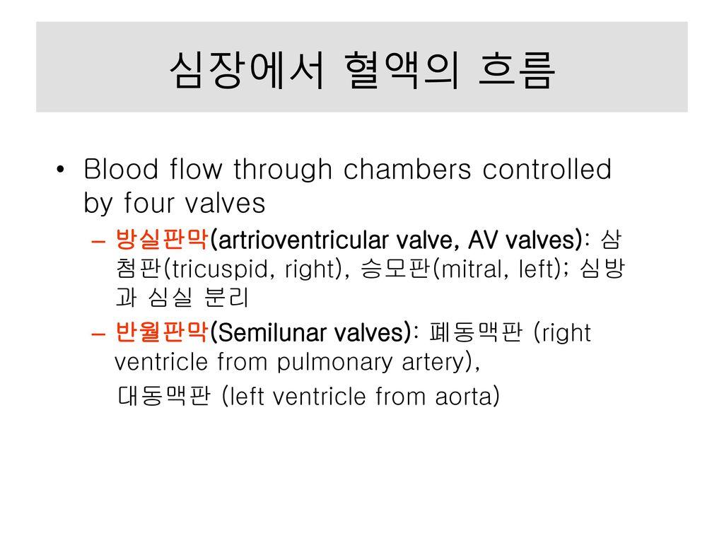 심장에서 혈액의 흐름 Blood flow through chambers controlled by four valves