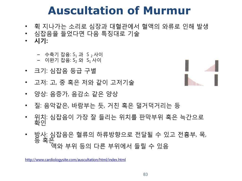 Auscultation of Murmur