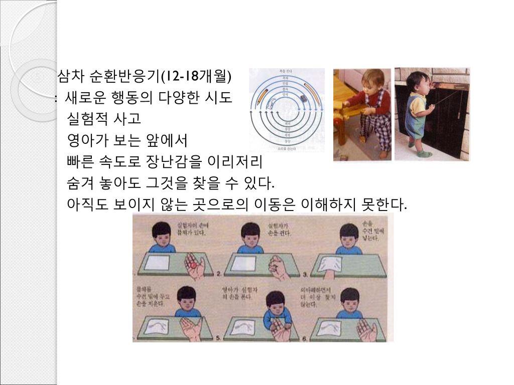삼차 순환반응기(12-18개월) : 새로운 행동의 다양한 시도. 실험적 사고. 영아가 보는 앞에서.