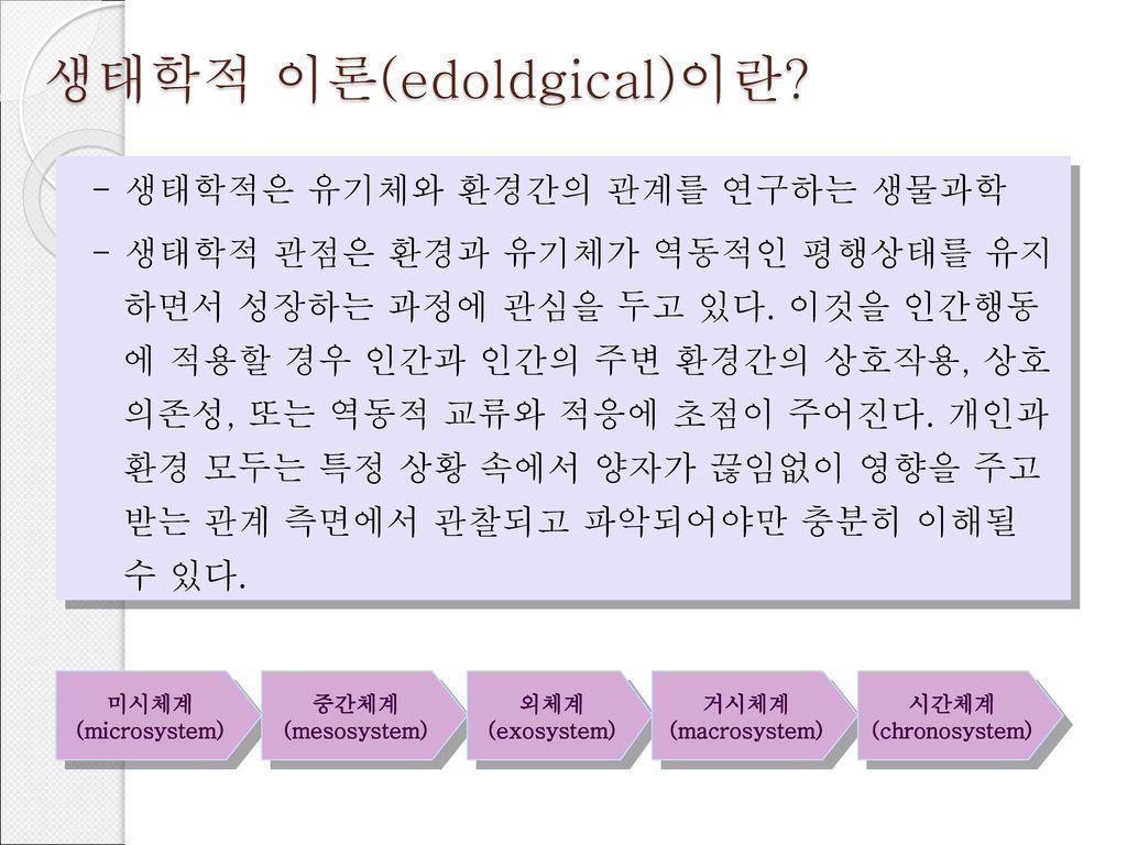 생태학적 이론(edoldgical)이란