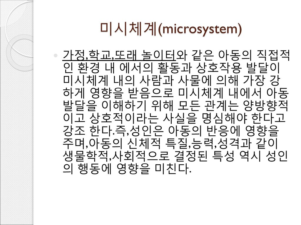 미시체계(microsystem)