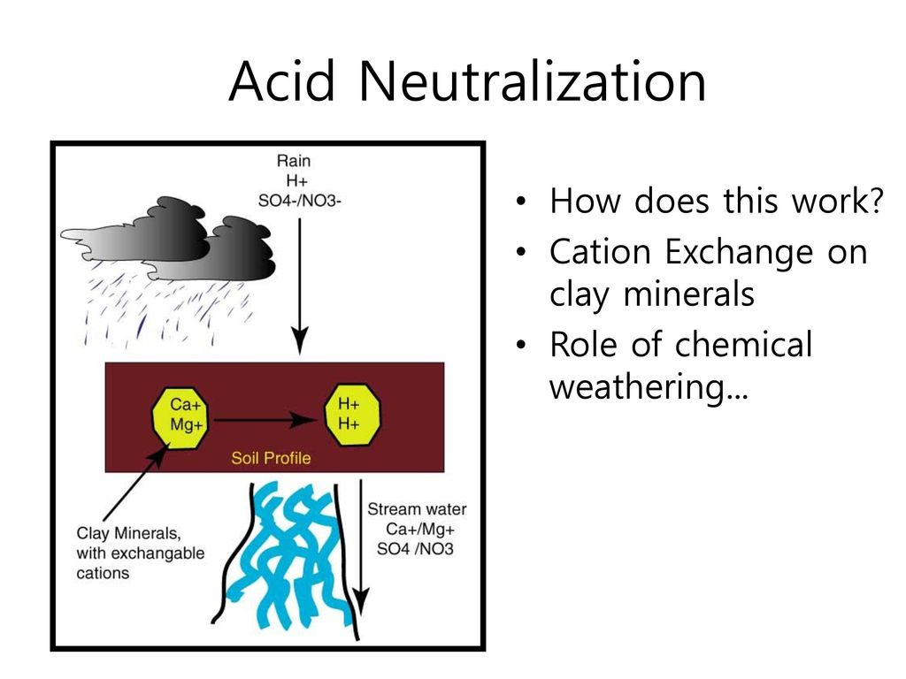 Acid Neutralization How does this work