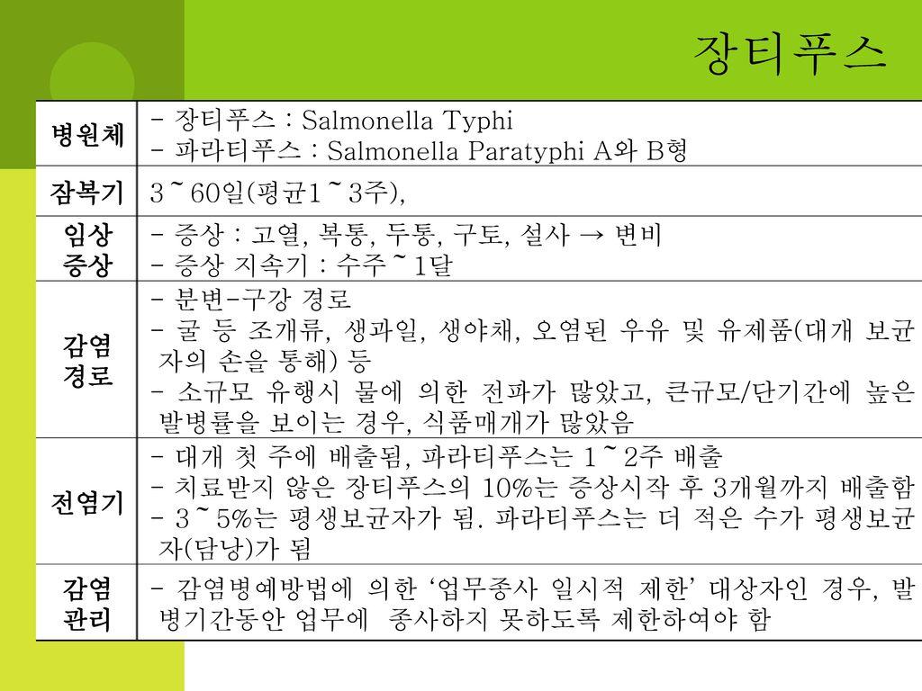 장티푸스 병원체 - 장티푸스 : Salmonella Typhi