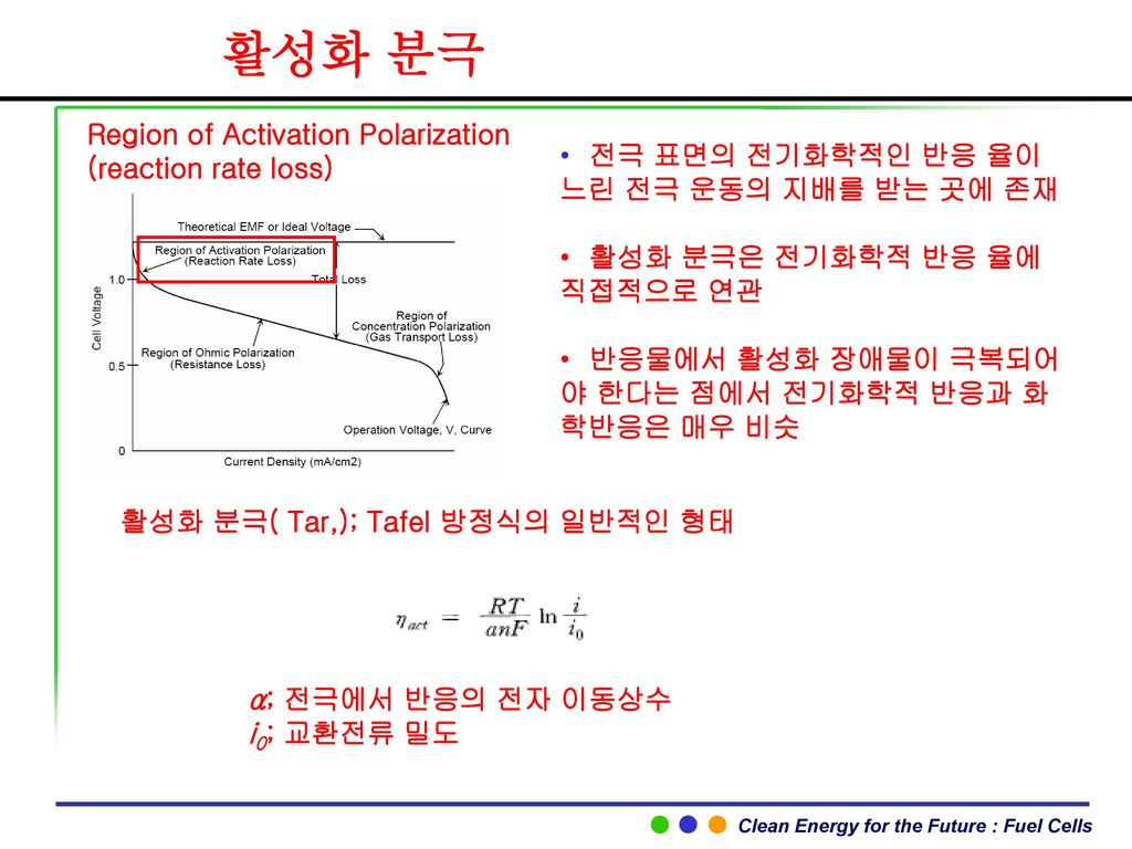 활성화 분극 Region of Activation Polarization (reaction rate loss)