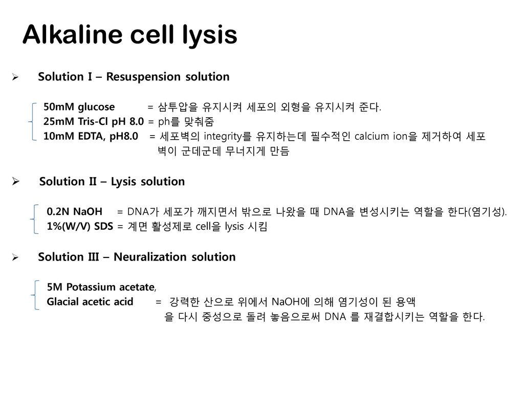 Alkaline cell lysis Solution II – Lysis solution