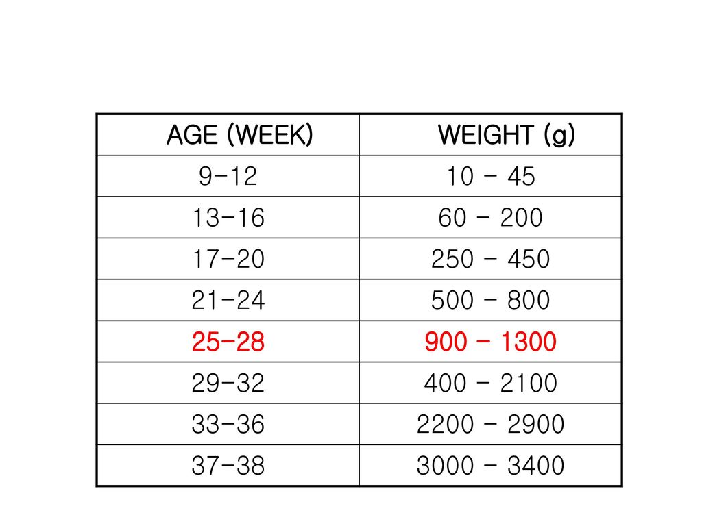 AGE (WEEK) WEIGHT (g)