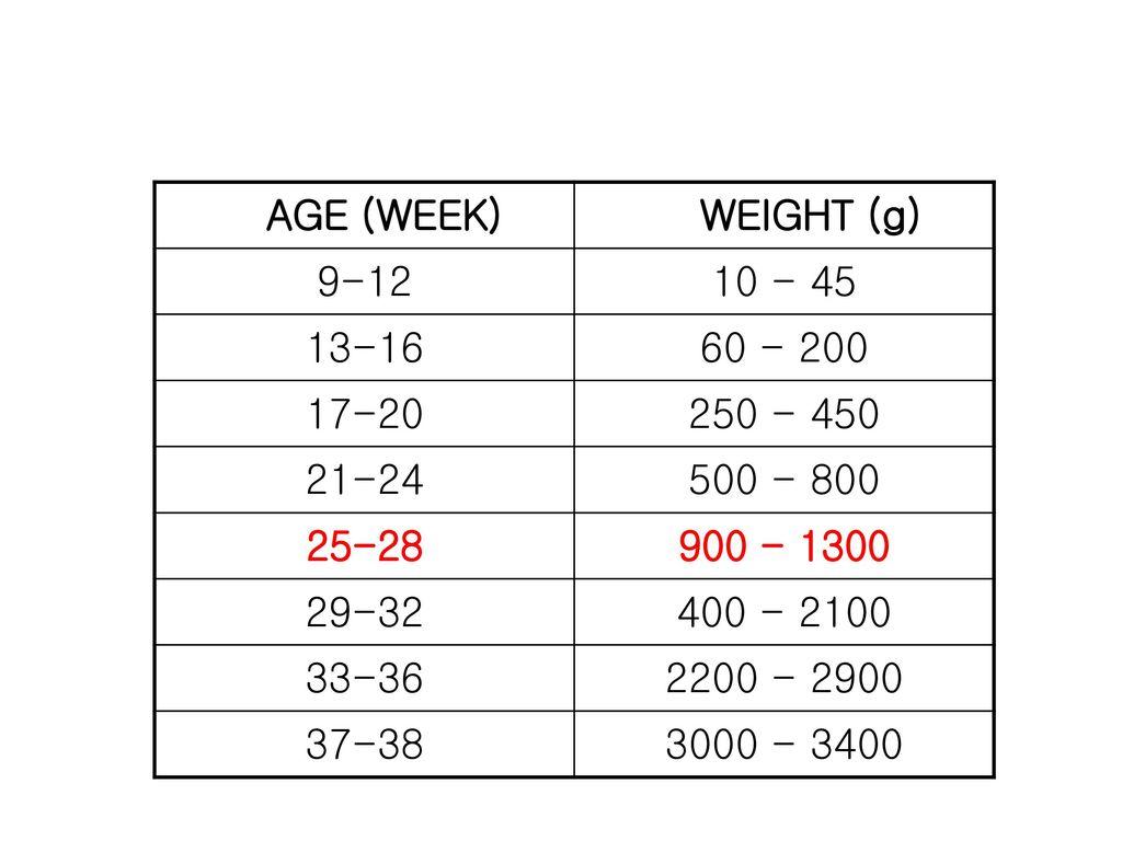 AGE (WEEK) WEIGHT (g) 9-12. 10 - 45. 13-16. 60 - 200. 17-20. 250 - 450. 21-24. 500 - 800. 25-28.