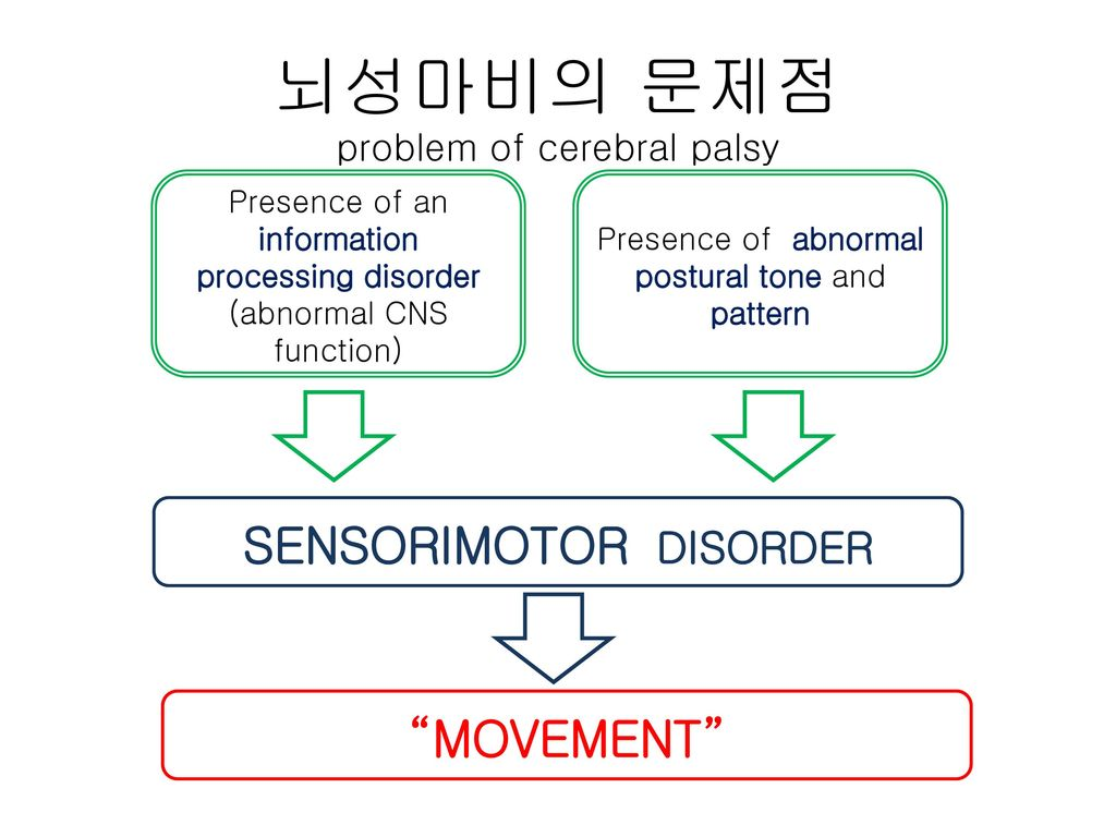 뇌성마비의 문제점 problem of cerebral palsy
