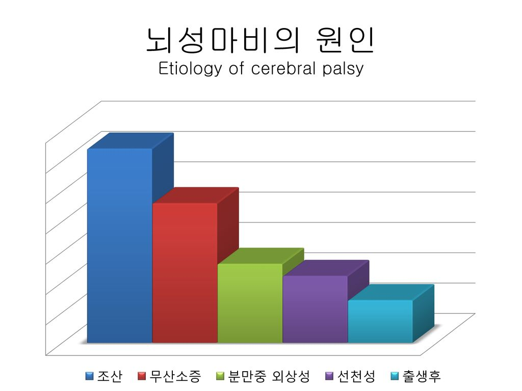 뇌성마비의 원인 Etiology of cerebral palsy