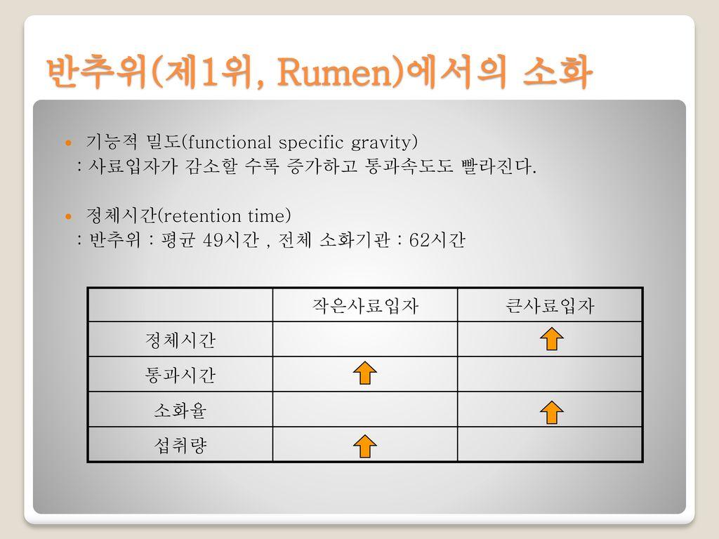 반추위(제1위, Rumen)에서의 소화 기능적 밀도(functional specific gravity)
