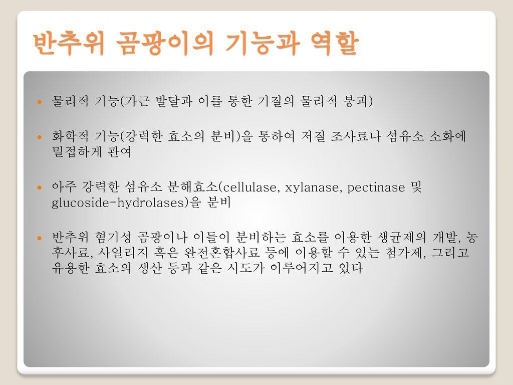 반추위 곰팡이의 기능과 역할 물리적 기능(가근 발달과 이를 통한 기질의 물리적 붕괴)