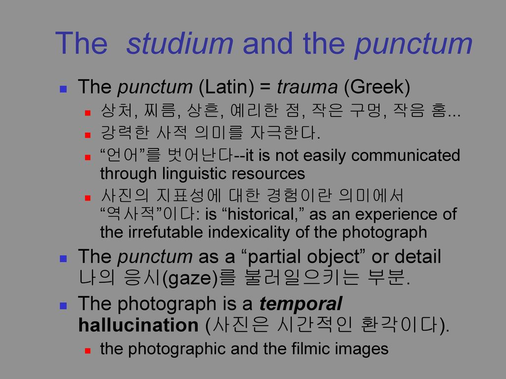 Responce to Barthe's Essay Camera Lucida – Photography Essay