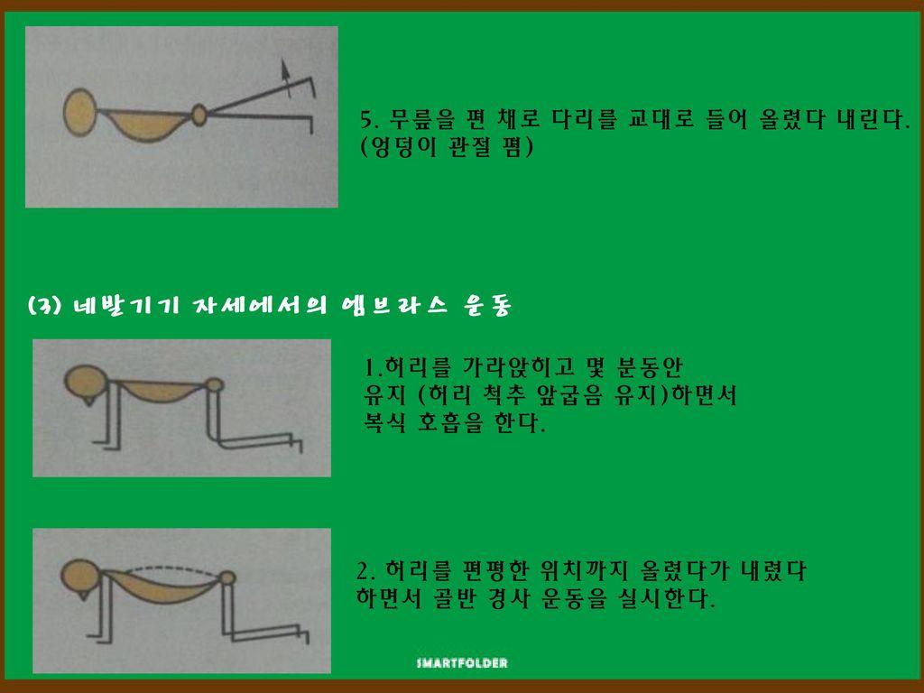 (3) 네발기기 자세에서의 엠브라스 운동 5. 무릎을 편 채로 다리를 교대로 들어 올렸다 내린다. (엉덩이 관절 폄)