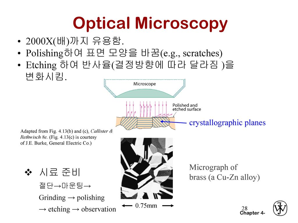 Optical Microscopy • 2000X(배)까지 유용함.