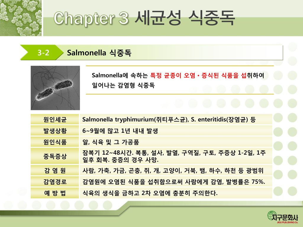 Salmonella 식중독 3-2 Salmonella에 속하는 특정 균종이 오염ㆍ증식된 식품을 섭취하여 일어나는 감염형 식중독