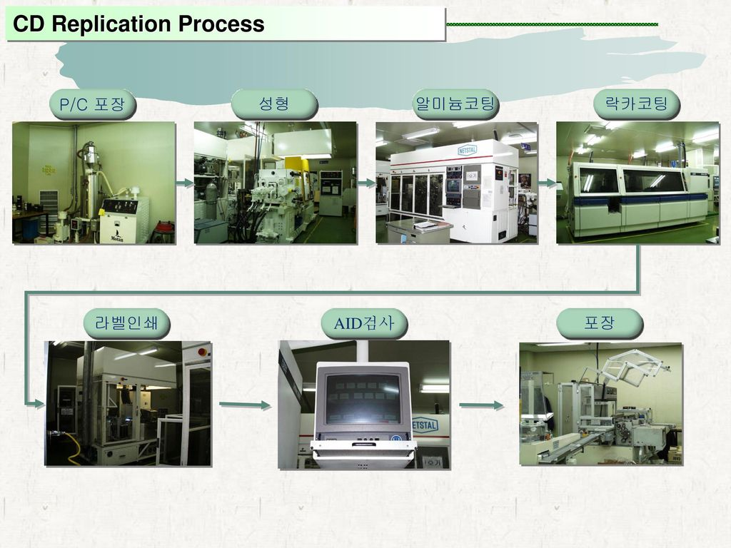CD Replication Process