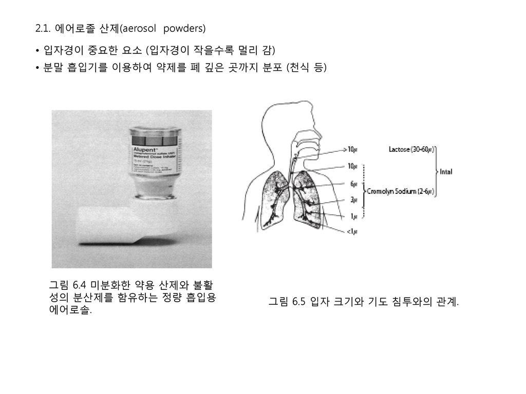 2.1. 에어로졸 산제(aerosol powders)